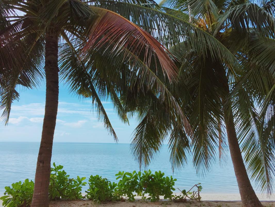 海外婚禮,蘇梅島,samui,蘇梅島海外婚禮,蘇梅島婚禮,海島婚禮,泰國婚禮,蘇梅島艾美酒店