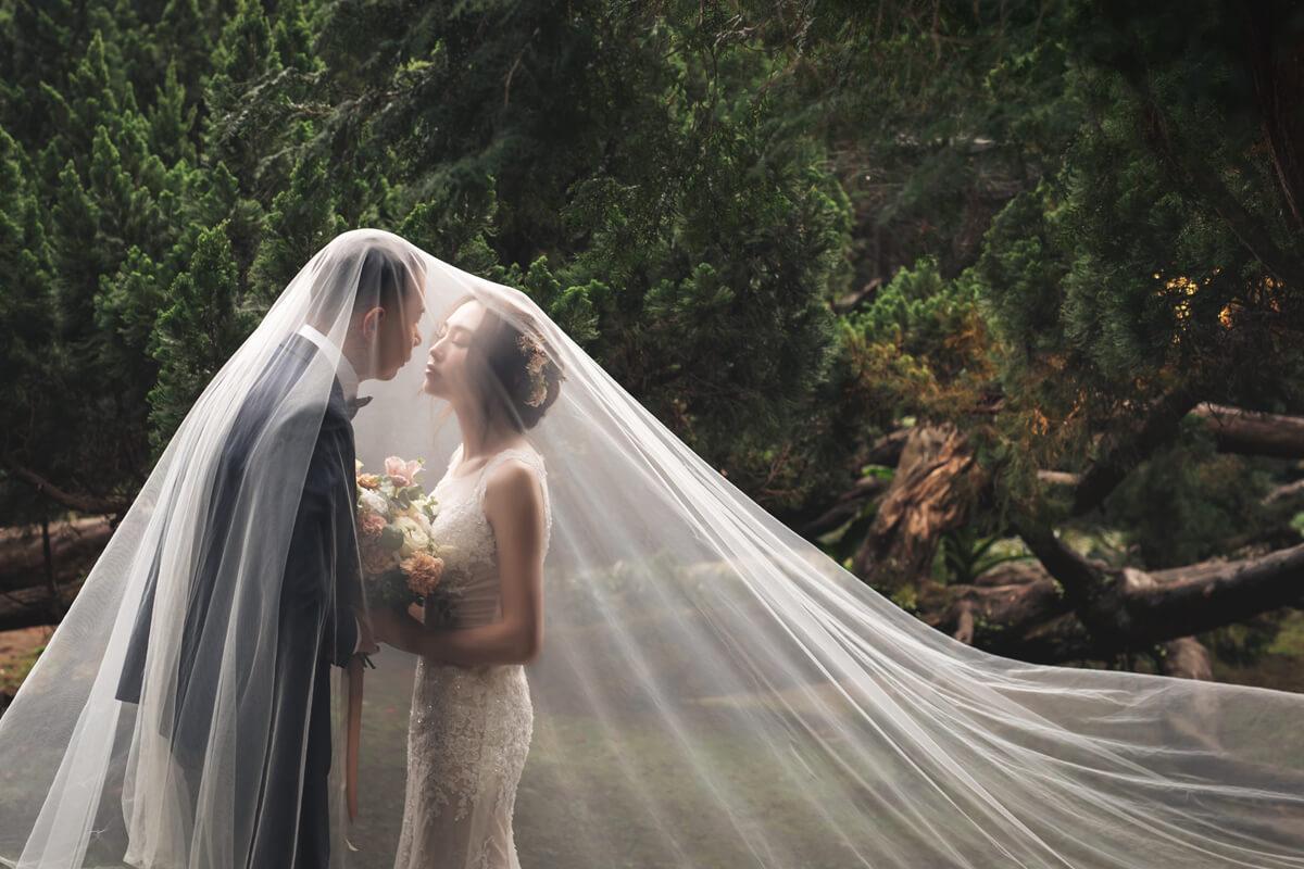 婚紗工作室,婚紗攝影,大同大學婚紗,花卉試驗中心,陽明山婚紗,自助婚紗,棚拍婚紗,森林婚紗